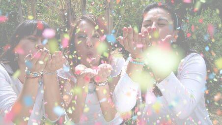 blog_movie_maker_fx_fadein_shirokara